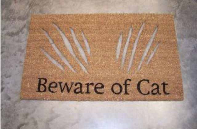 Creatively Original Door Mats 24 Pics