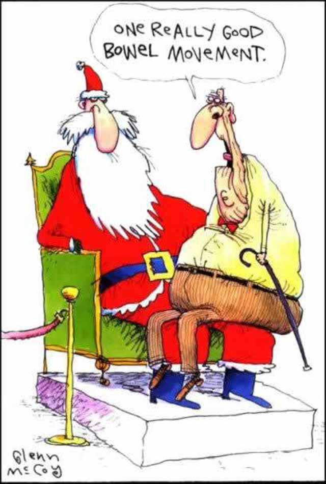 Funny Christmas Cartoon  Jokes Memes amp Pictures