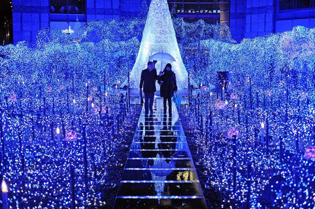Holiday Light Tour: Submit Your Favorites! blog image 3