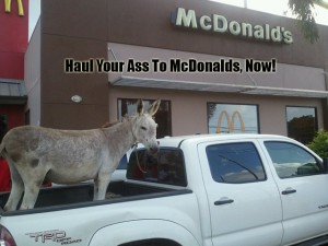haul ass to Mcdonalds
