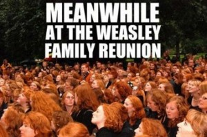 thumb_Meanwhile_At_The_Weasley_Family_Reunion