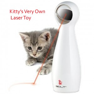 kitty laser toy
