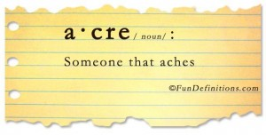 Fun Definitions - acre