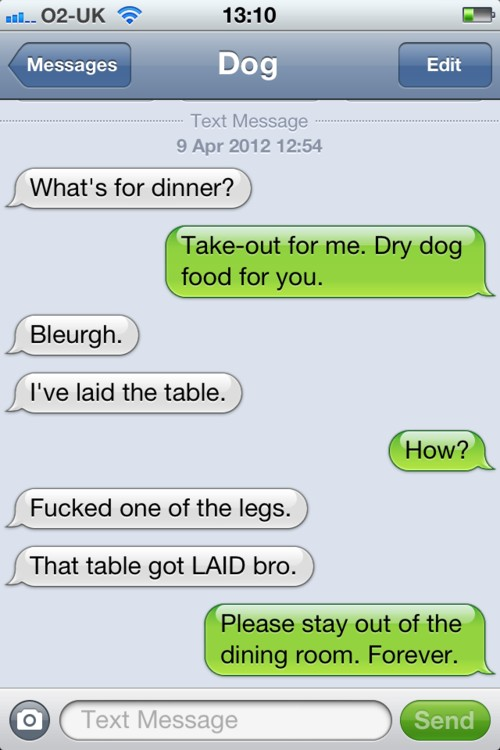 funny texts from your dog 18 pics
