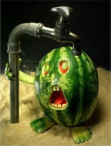 Watermelon-No-Water
