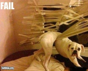 epic-fail-photos-escaping-fail