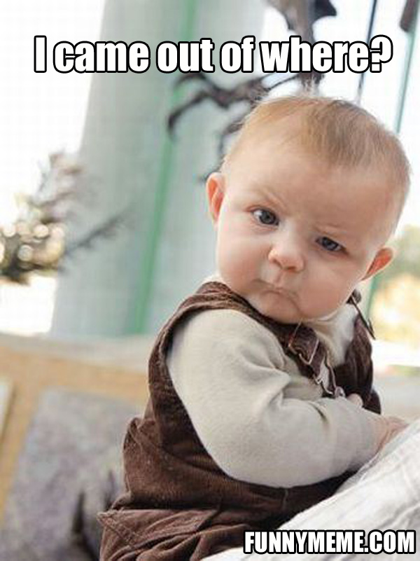 Skeptical Baby Meme  20 Pics Funny Baby Faces With Captions