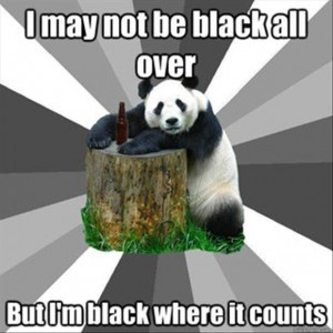 black bear meme