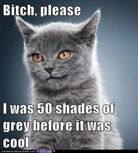 50 shades of grey pictures 11