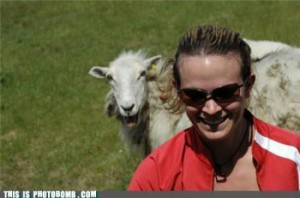 baaaaaaaad boy photobomb