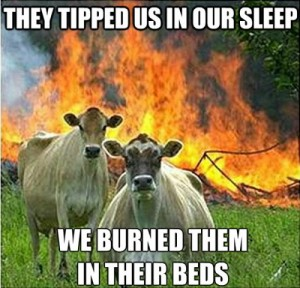 evil cow meme 4