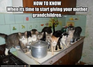 funny-pictures-how-to-know-when-its-time-to-start-giving-your-mother-grandchildren