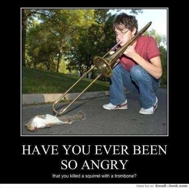 the best of  u0026quot have you ever been so angry u0026quot   25 pics
