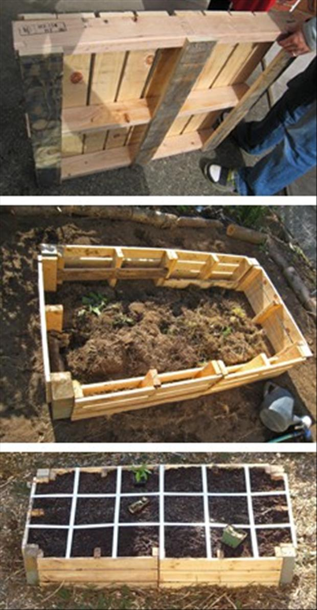 Pallet ideas raised garden dump a day for Gardening using pallets