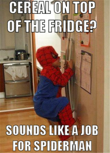 sounds like a job from spiderman