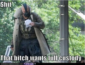 the dark knight rises funny pictures