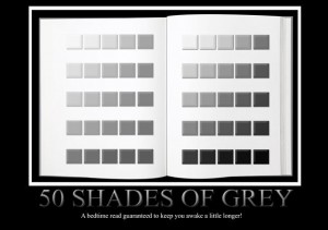 50 shades of grey (2)