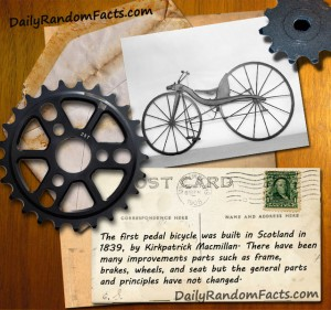 Bicycle fact