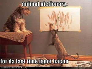 bacon funny