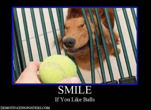 dog balls demotivational posters