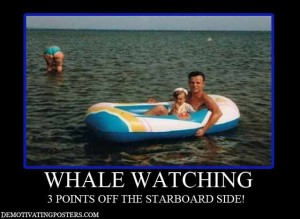 whale whatching demotivational posters