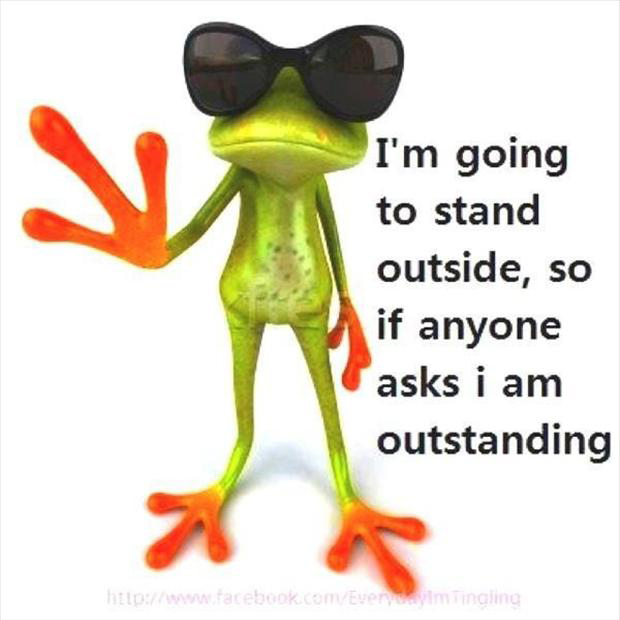 Pics Photos - Funny Frog Picture Nice Quotes