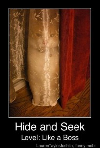 hide and seek funny demotivational posters