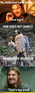 one does not simply walk into mordor funny meme
