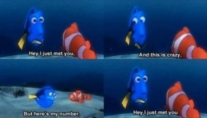we just met, this must be crazy, but heres my number, call me maybe funny pictures