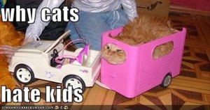 cats hate kids