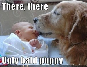 dog and baby, funny