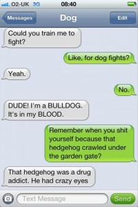 dog fights, funny