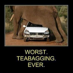 teabagging, funny