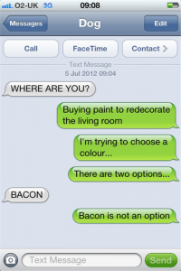 texts from dog bacon