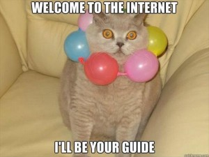 welcome to the internet funny cat pictures