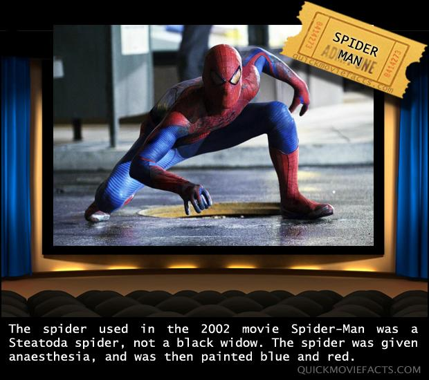 movie facts spiderman dump a day