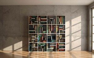amazing bookshelves, dumpaday (37)