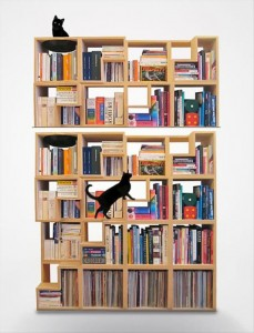 amazing bookshelves, dumpaday (45)