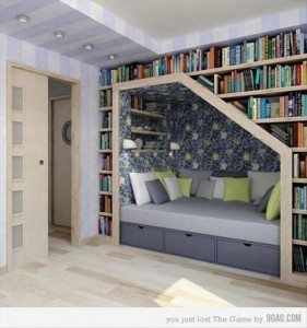 amazing bookshelves, dumpaday (8)