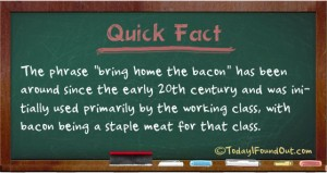 bacon-facts