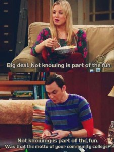 big bang theory 1