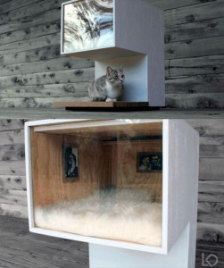 cat house (2)