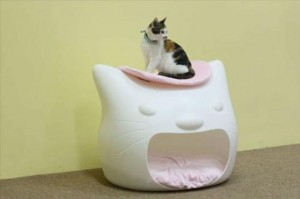 cat house (22)