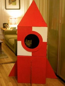 cat house (9)