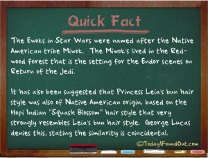 ewok-facts
