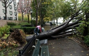 hurricane sandy pictures (14)