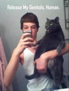 man holding cat, funny