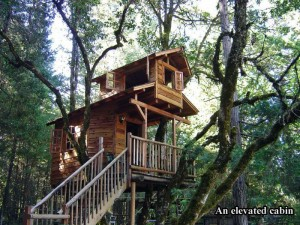 tree houses, dumpaday (11)