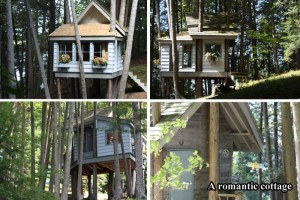 tree houses, dumpaday (16)