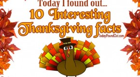 Top Ten Thanksgiving Facts – Infographic